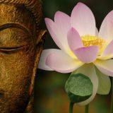 Massaggio Tradizionale Thailandese o Thai Yoga